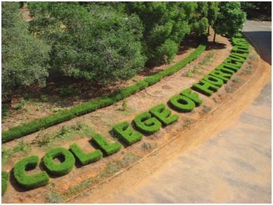 College of Horticulture Vellanikkara