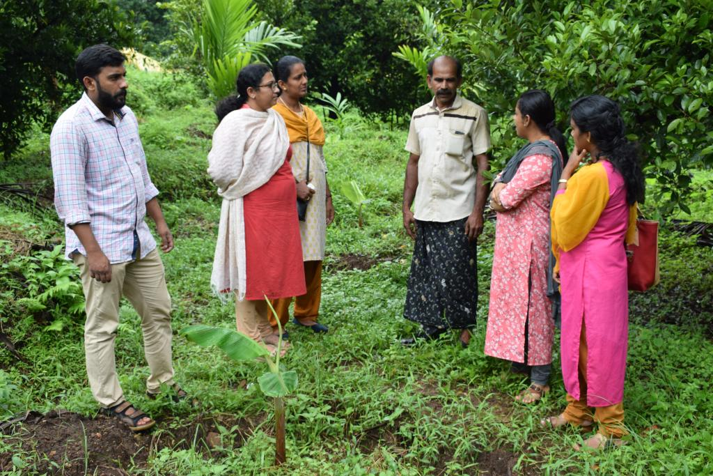 AS a part of FLD Organic Management of Sigatoka leaf spot of banana at Pariyaram Dtd 22.07.2019