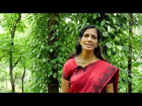 Embedded thumbnail for വേപ്പണ്ണ വെളുത്തുള്ളി സോപ്പ് എങ്ങനെ ഉപയോഗിക്കാം  ready to use neem oil garlic soap