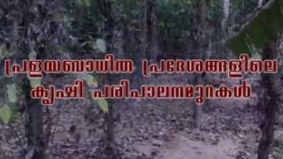 Embedded thumbnail for Fruit rot Disease in Arecanut